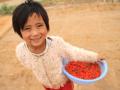 宜农贷:创新公益的实践者