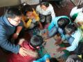 昭通市民政局鲁甸社会工作支援团服务情况总结