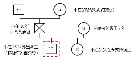 案主家庭系统图