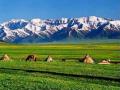 新疆乌鲁木齐:基层百名社区工作者谈身边变化
