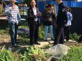 浦东:禁毒社工参与祝桥镇禁毒铲毒专项整治工作