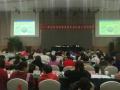 2017年北京市妇联系统专业社会工作研修班举行