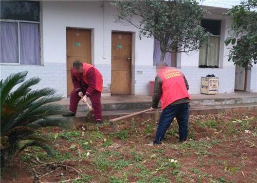 图为志愿者在敬老院翻耕菜地