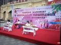 共青团驿城区委青少年事务社工集中宣传活动