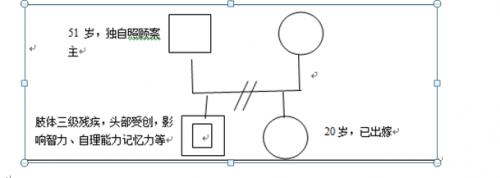 家庭结构图