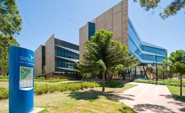 西悉尼大学社会工作专业就业前景如何?