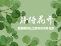 《静待花开-首期讲好千赢体育官网故事优秀作品精选集》隆重推出